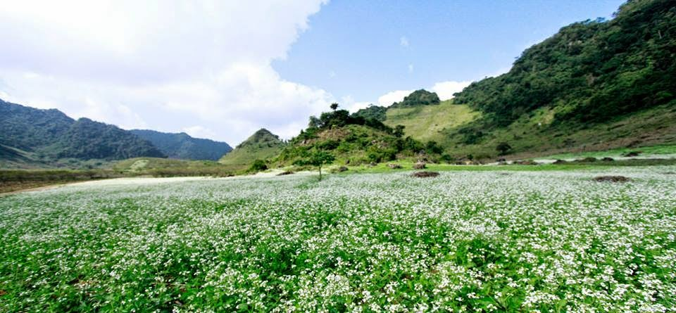 Mai Chau – Pu Luong Nature Reserve 3Days/2nights (Daily Departure)