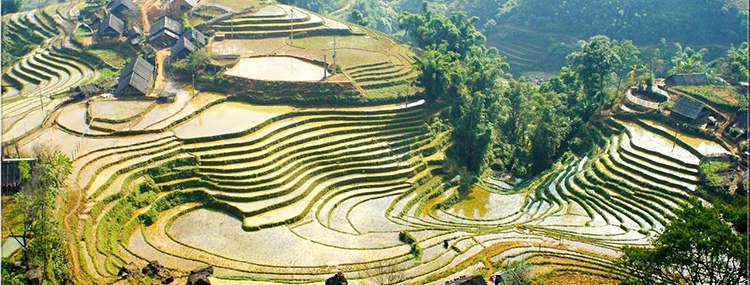 SAPA  2 DAYS  1 NIGHT  - HOME STAY