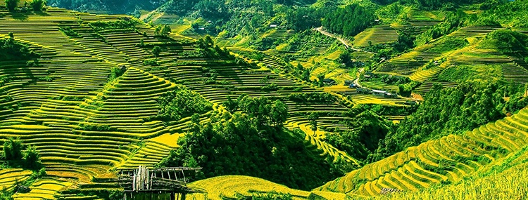 SAPA TREKKING 3 DAYS  2 NIGHTS